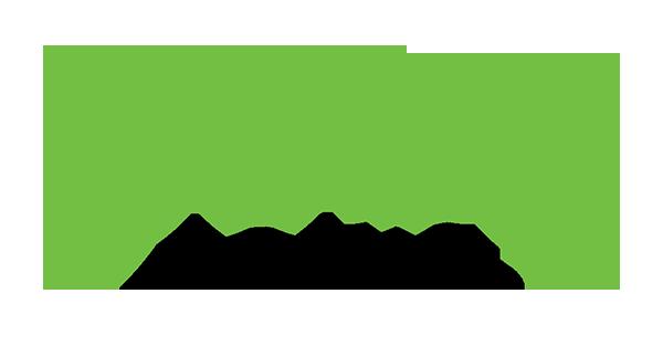 gogo loans
